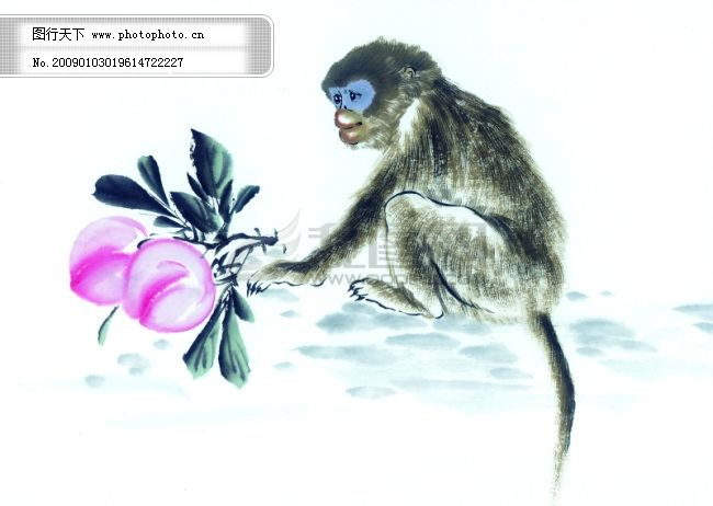 中华艺术绘画_古画_动物绘画_猴子_中国古代绘画