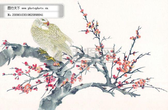 中华艺术绘画_古画_动物绘画_孔雀_天鹅_鸳鸯_凤凰_中国古代绘画