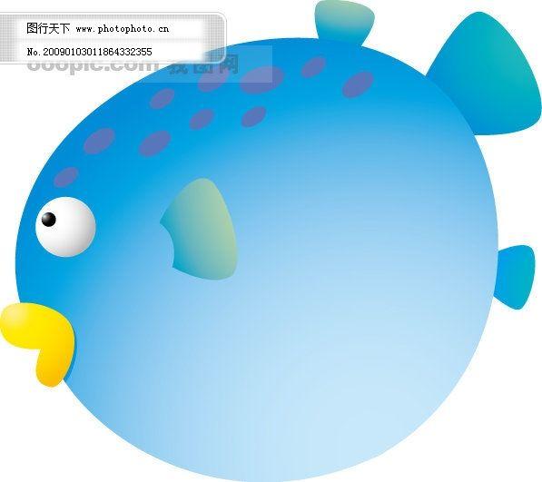 可爱的金鱼