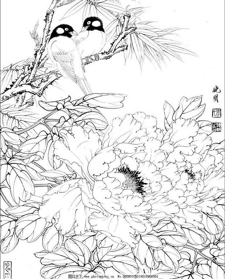 白描花鸟 工笔画鸳鸯 白描 工笔画 花鸟 鸟 花 牡丹 牡丹花 花蕊 花枝