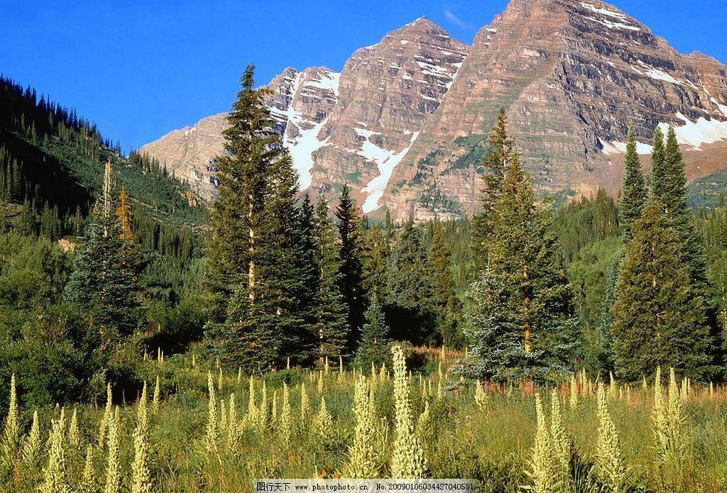 我的家乡 石山 积雪 绿色 树 山区 自然景观 山水风景 摄影图库 72dpi