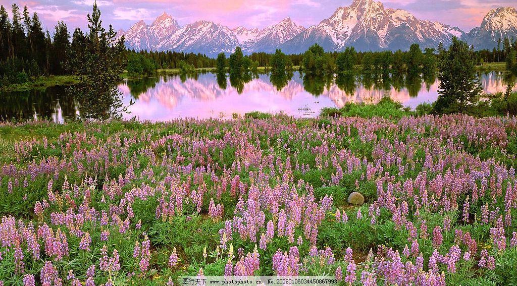 山水 花 山 水 壁纸 风景 风光 美景 美丽风光 自然景观 山水风景