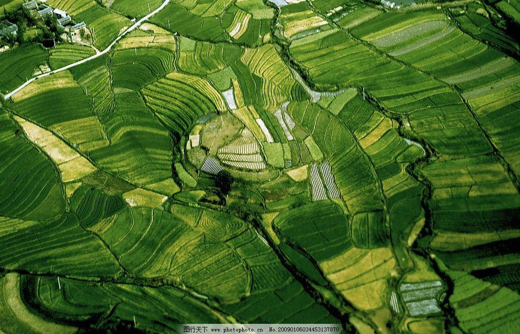 梯田 绿色 房屋 树群 湖泊 草地 自然景观 山水风景 摄影图库 300dpi