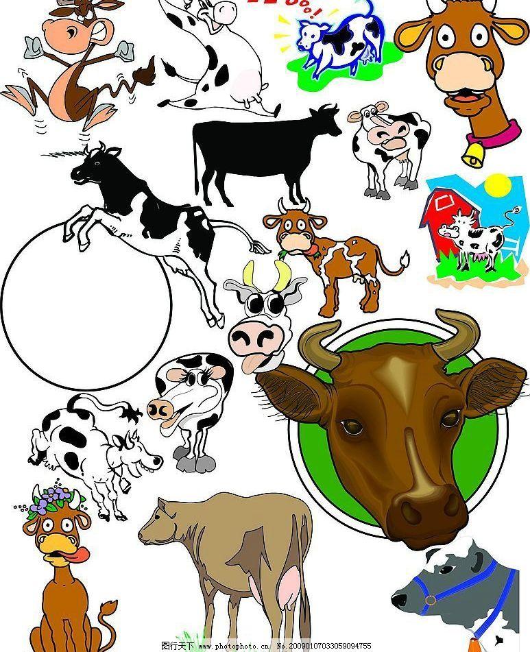 动物十二生肖图片