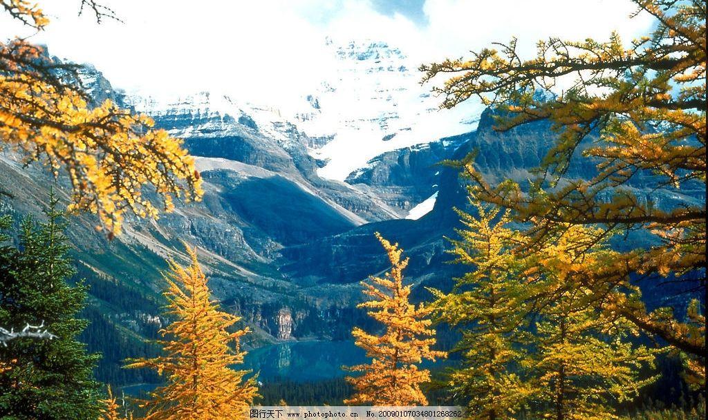 雪山 树 树叶 浪漫 湖泊 秋天 秋之语 素材 叶 美丽 安静 山 草 房子