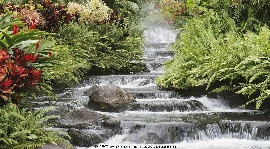 小溪 河流 树林 自然景观 自然风景 摄影图库 96dpi jpg