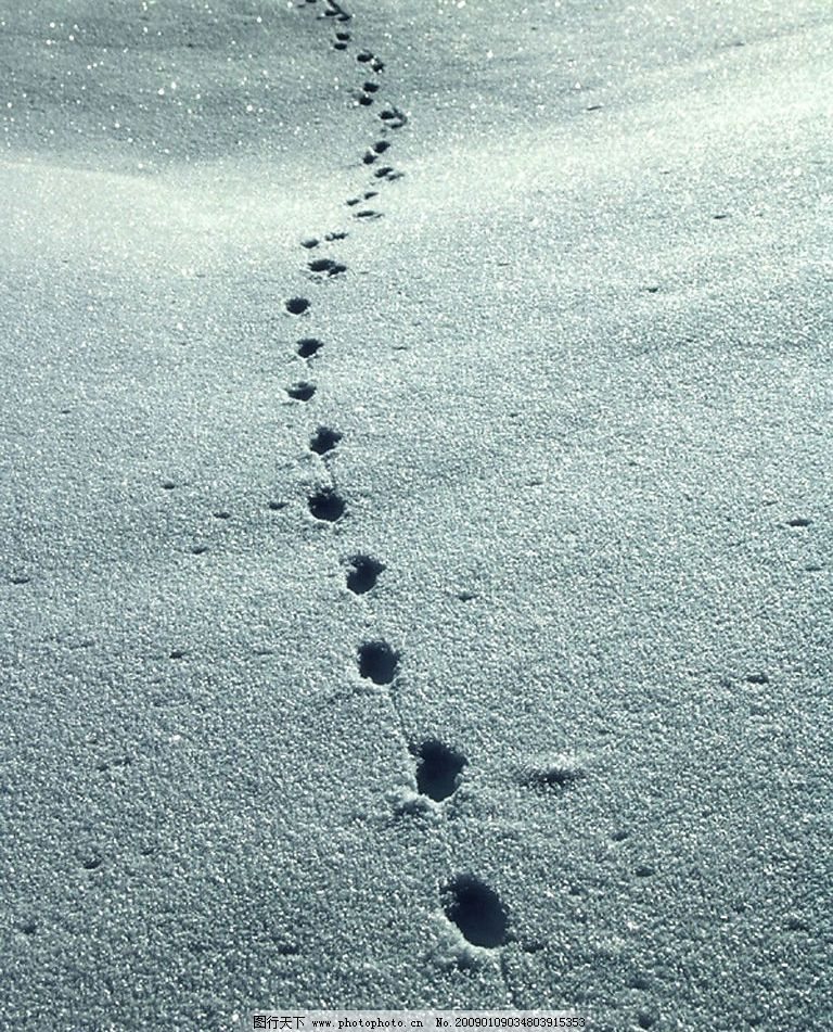 雪中的脚印图片