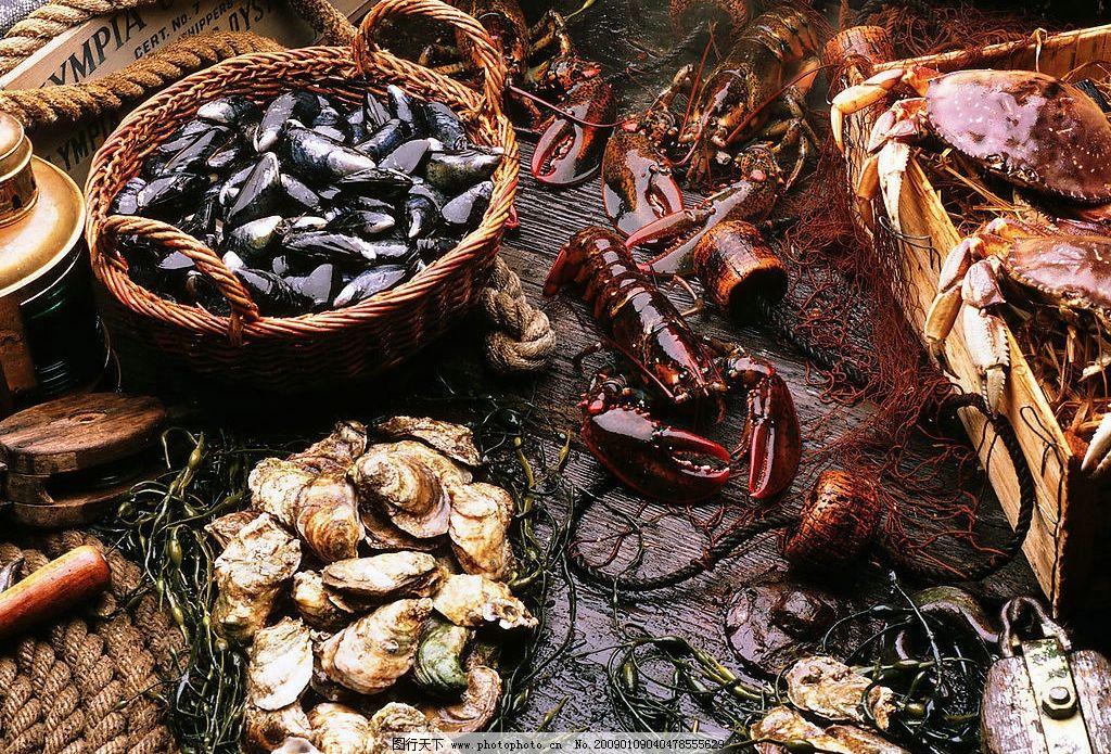 鲍鱼 生鲜鲍鱼 海鲜 海洋生物 动物 美食原料 摄影图库 生物世界