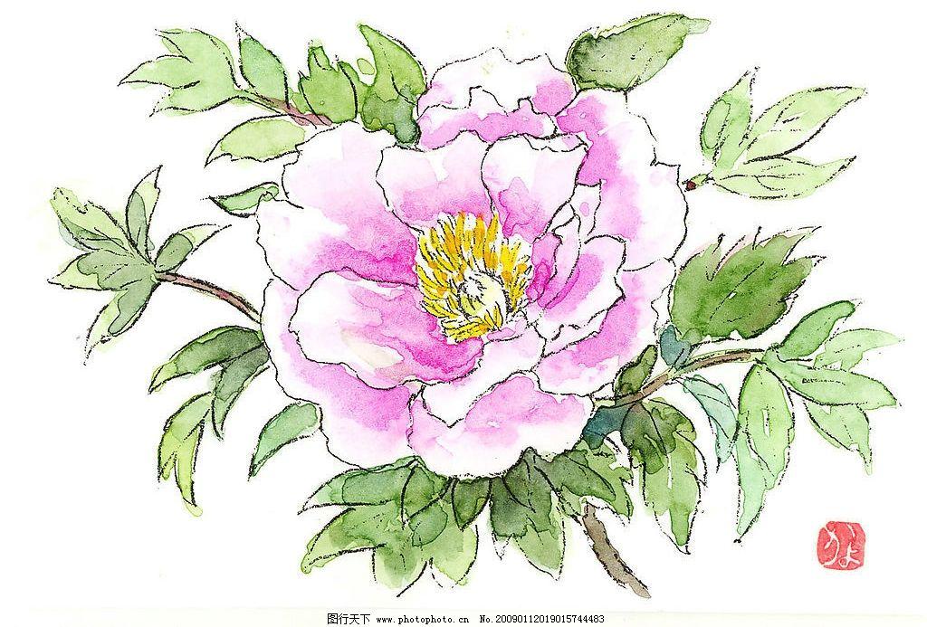 牡丹花 美术画 文化艺术 绘画书法 设计图库 300dpi jpg