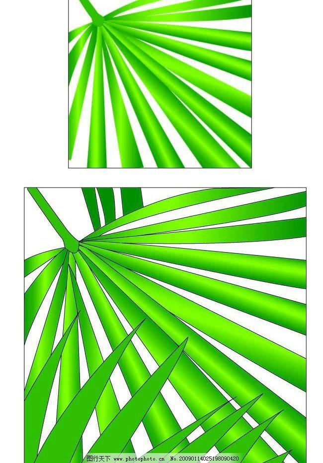 棕榈叶矢量图ai格式图片