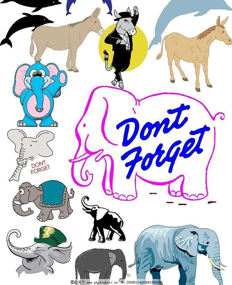 动物海豚大象驴图片