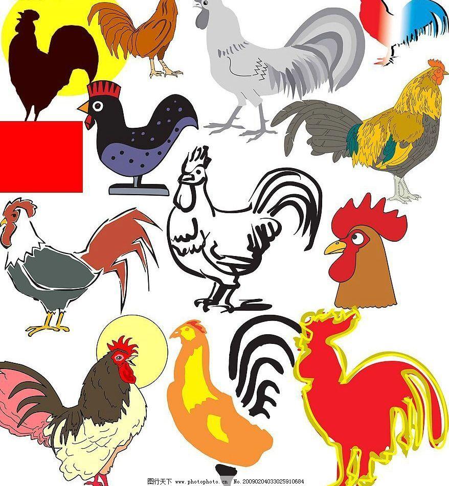 动物十二生肖鸡图片