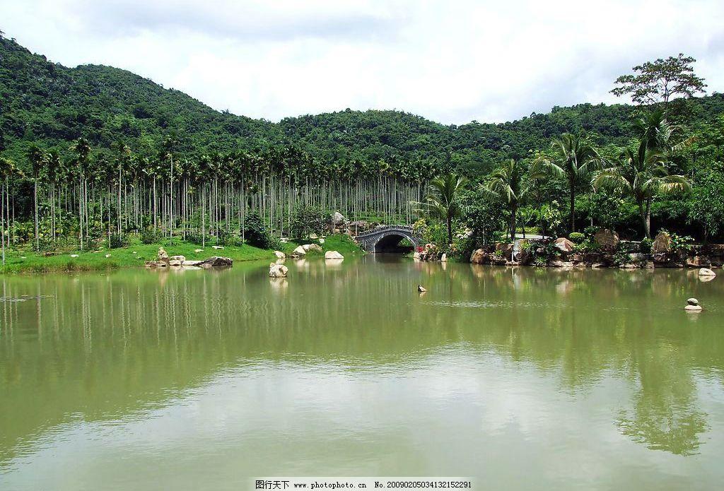 热带雨林 海南 旅游摄影 自然风景 摄影图库