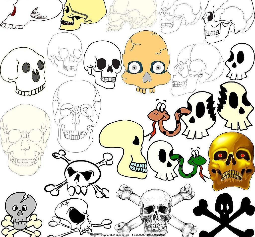骷髅 人骨 骨骼 人头骨 头骨 骷髅头 死亡 死亡符号 死亡标志 海盗
