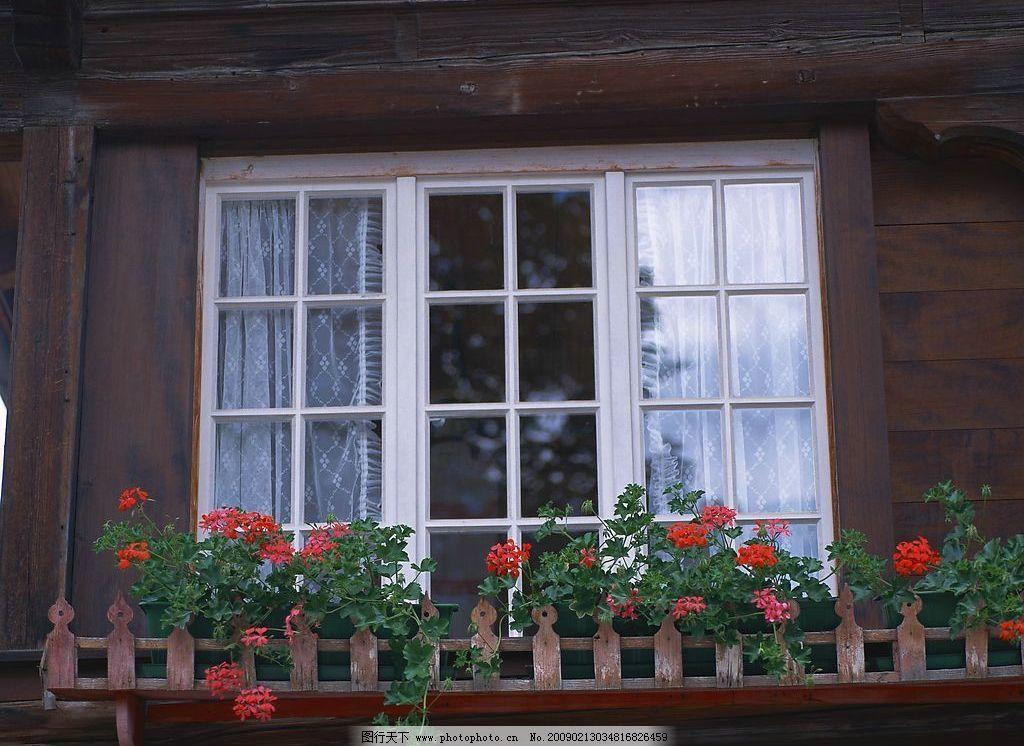 外窗绿化 窗外风景 窗帘 玻璃 植物 花 木墙 自然景观 自然风景