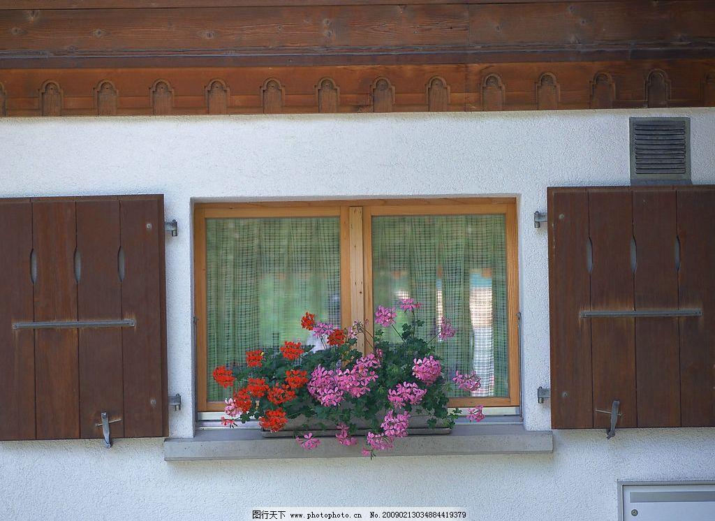 外窗绿化 窗外风景 窗 窗帘 玻璃 花 植物 自然景观 自然风景 摄影