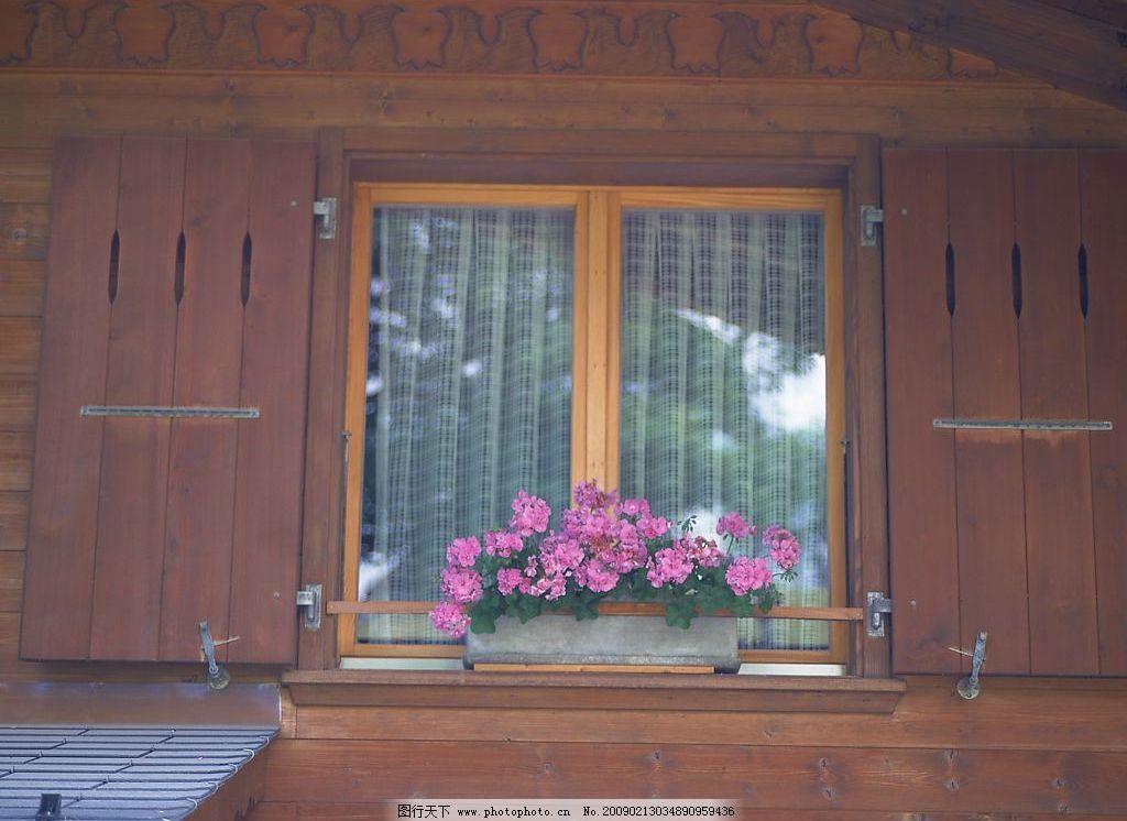 外窗绿化 窗外风景 玻璃 窗 窗帘 植物 花 木墙 自然景观 自然风景