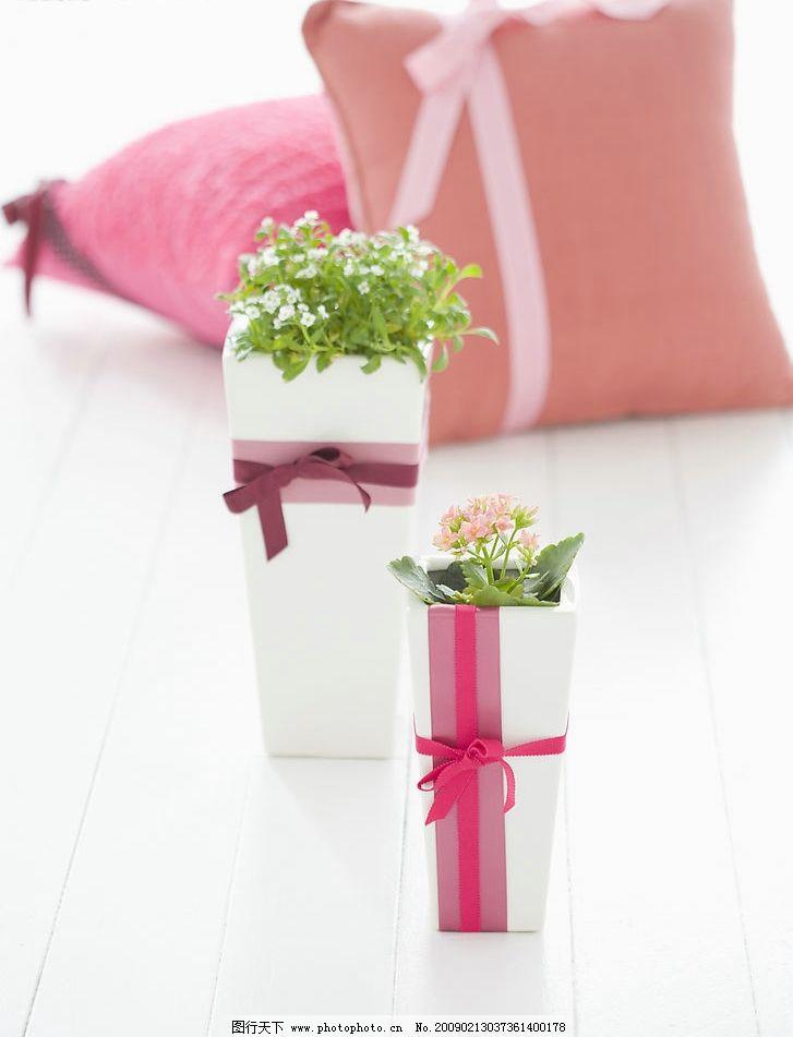 静物 富尔特素材辞典 礼品 绿植 靠垫 蝴蝶结 花朵 生活百科 家居生活