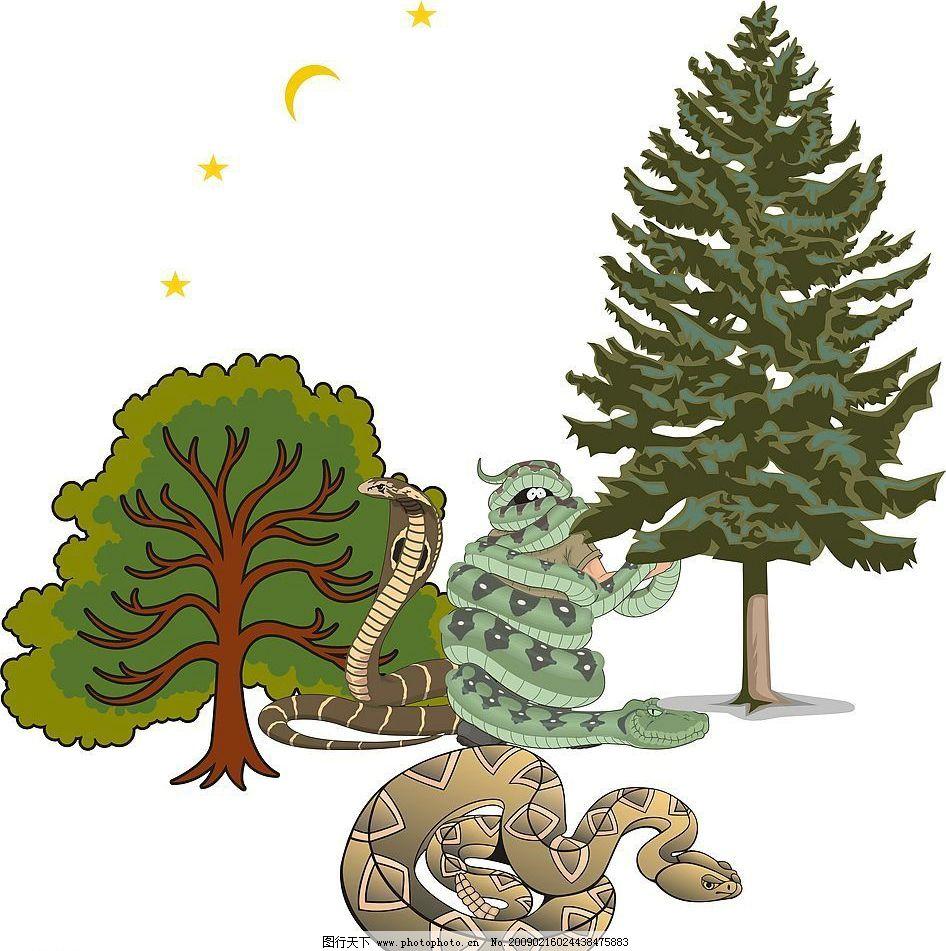蛇 树木 内食动物 牙带有毒素 不可靠近 矢量图 矢量图库