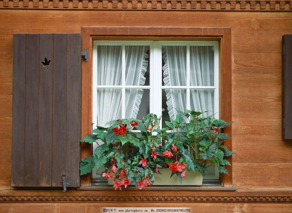 外窗绿化 窗外风景 花 植物 窗 玻璃 窗帘 窗纹 自然景观 自然风景 摄