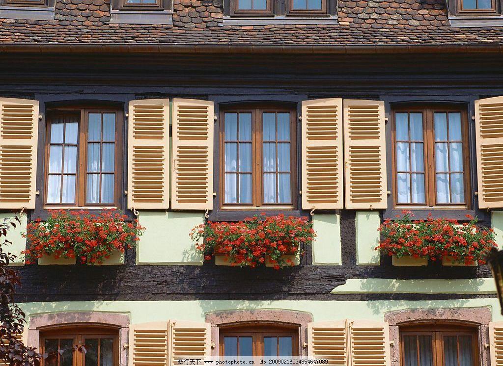外窗绿化 窗外风景 窗 窗帘 玻璃 花 植物 窗纹 自然景观 自然风景