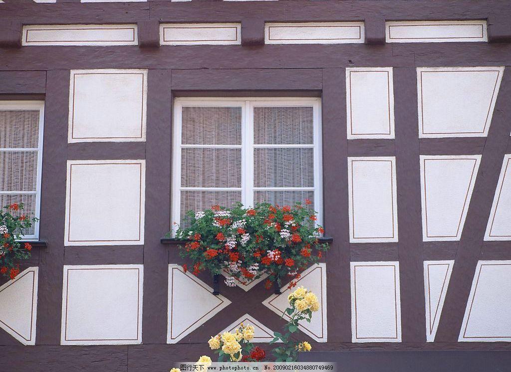 外窗绿化 窗外风景 花 植物 窗帘 玻璃 个性墙面 摄影图库