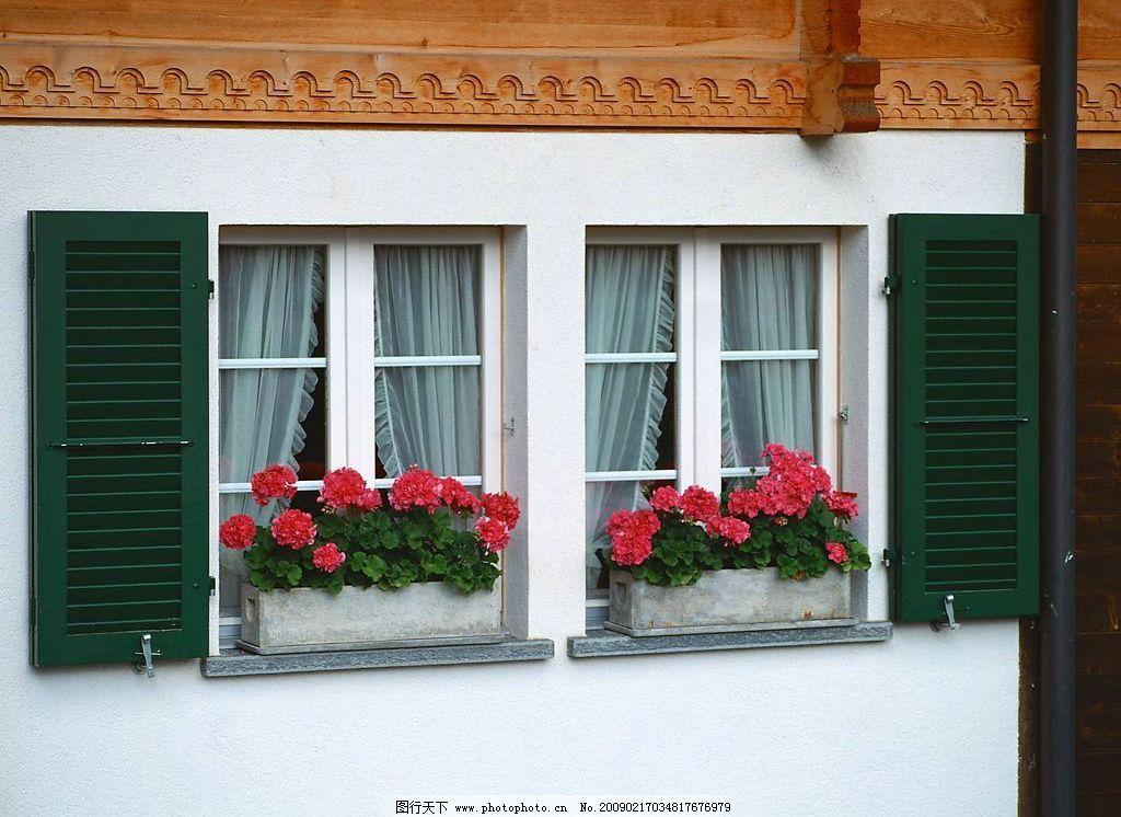 外窗绿化 窗外风景 玻璃 花 植物 窗帘 自然景观 自然风景 摄影图库