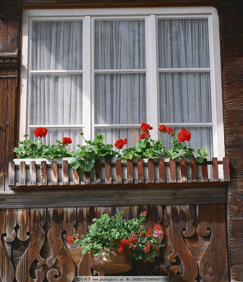 外窗绿化 窗外风景 木墙 花 植物 盆栽 玻璃 窗帘 窗纹 摄影图库