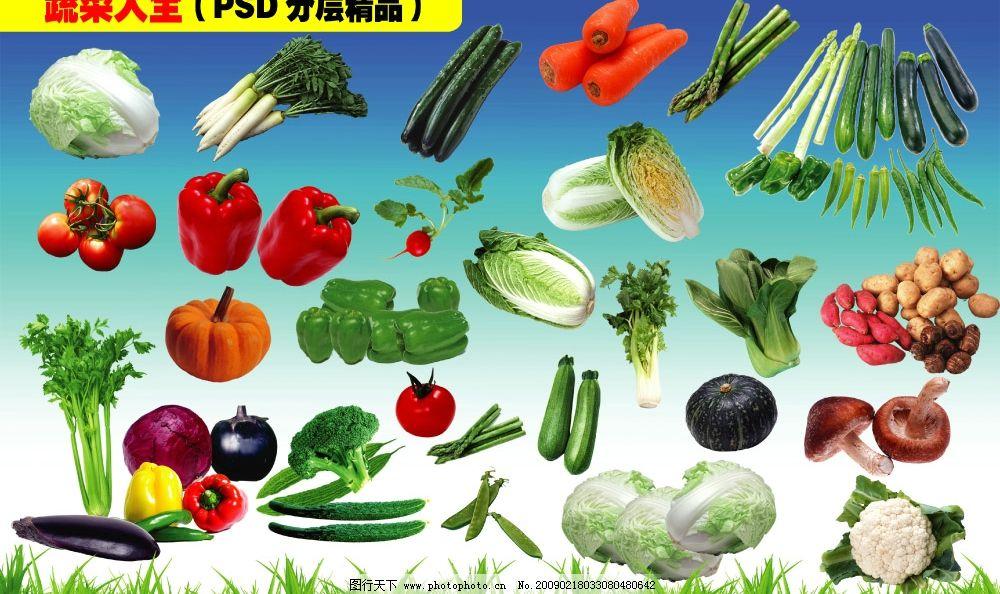 蔬菜素材(psd分层)图片_其他_psd分层_图行天下图库