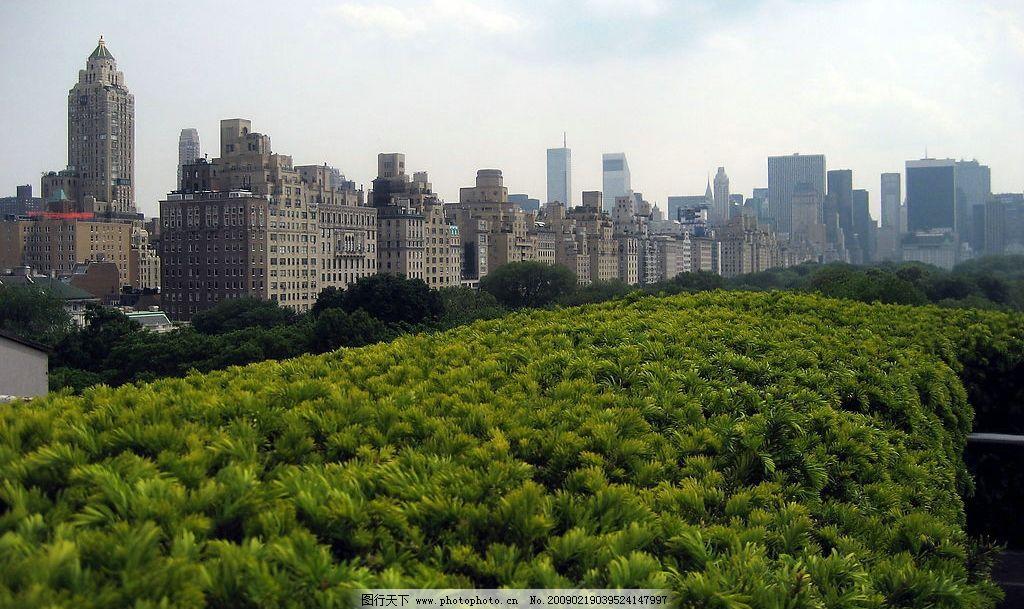 中央公园 公园 纽约 城市 风景 森林 繁华 幽静 中央 俯视 远景 建筑