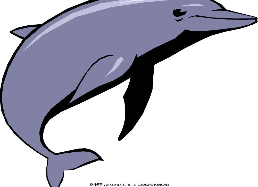 海豚图片_山水风景_自然景观_图行天下图库