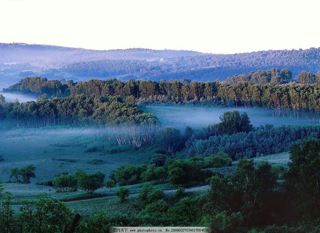 丛林雾霭 自然风景 自然景观 摄影图库 72dpi bmp