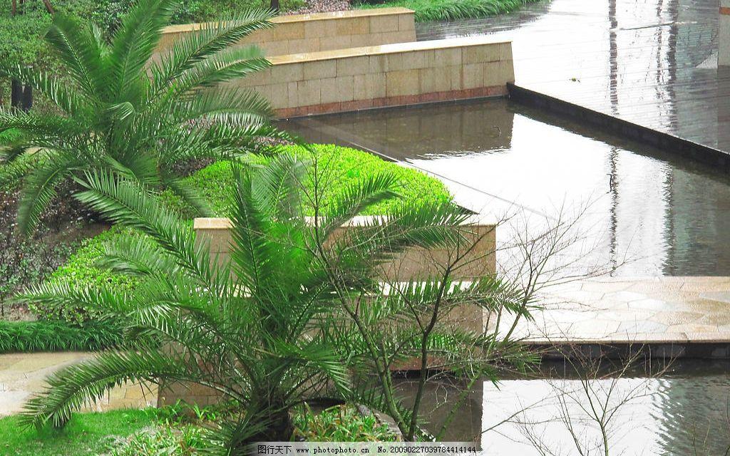 园林小景 园林 景观 树 草 水 棕树 草地 建筑园林 其他 摄影图库 180