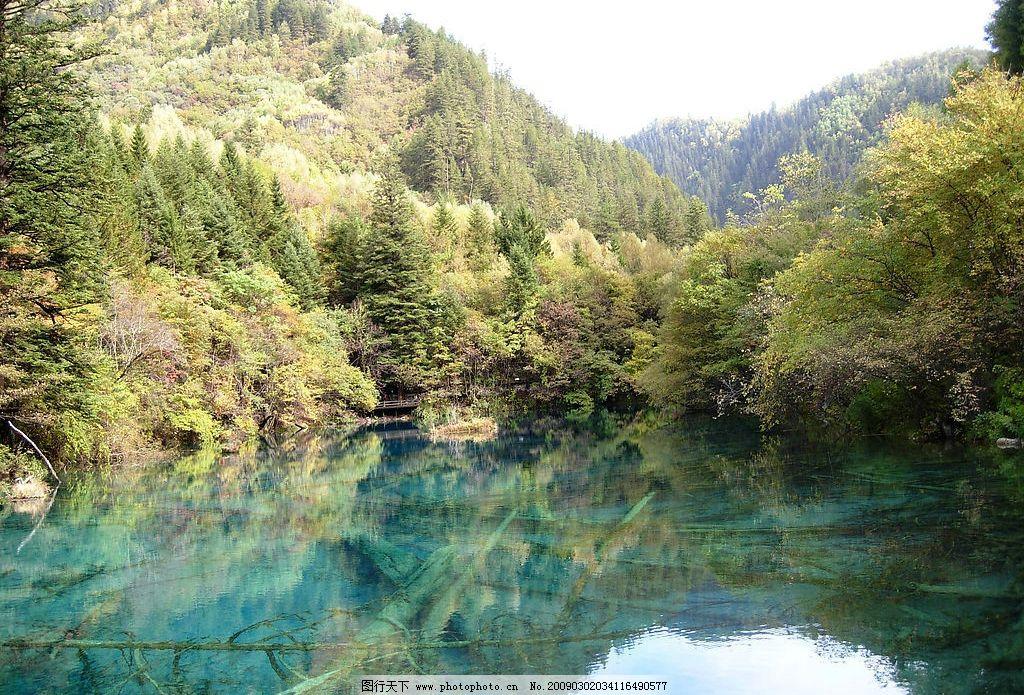 九寨沟风光 九寨沟 树木 河流 山 秋天 风景 旅游摄影 自然风景 摄影