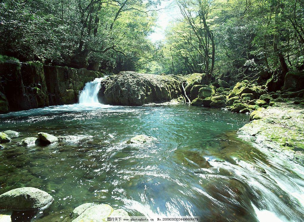 美丽的小溪 清泉 青石 溪水 树木 阳光 自然景观 山水风景 摄影图库