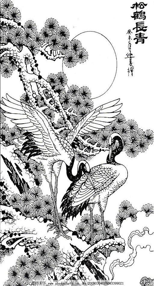 松鹤长青 仙鹤 松树 文化艺术 绘画书法 设计图库 50dpi jpg
