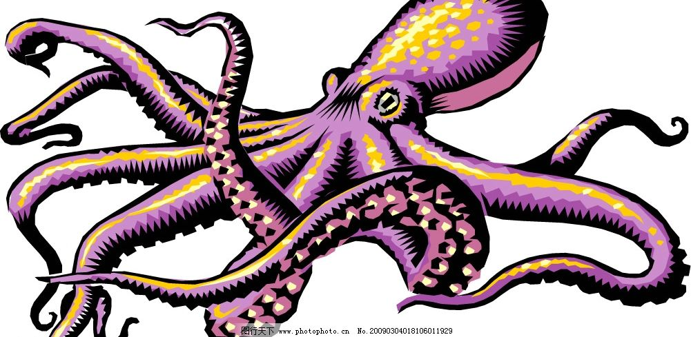 章鱼画法黑板报