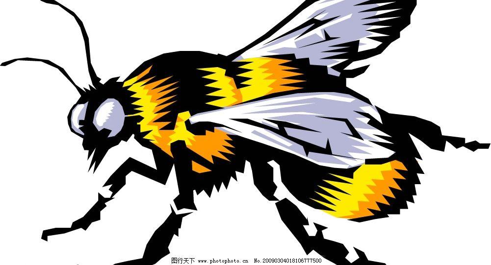 蜜蜂 生物世界 其他生物 矢量图库