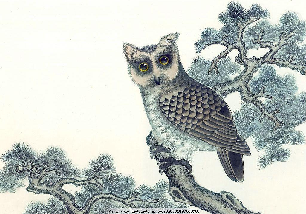 国画飞禽走兽47 动物 猫头鹰 文化艺术 绘画书法 设计图库 72dpi jpg