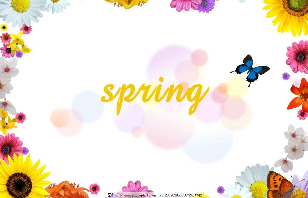 五彩缤纷的鲜花漂亮 向日葵 野菊花 边框 蝴蝶 海报 展板 广告