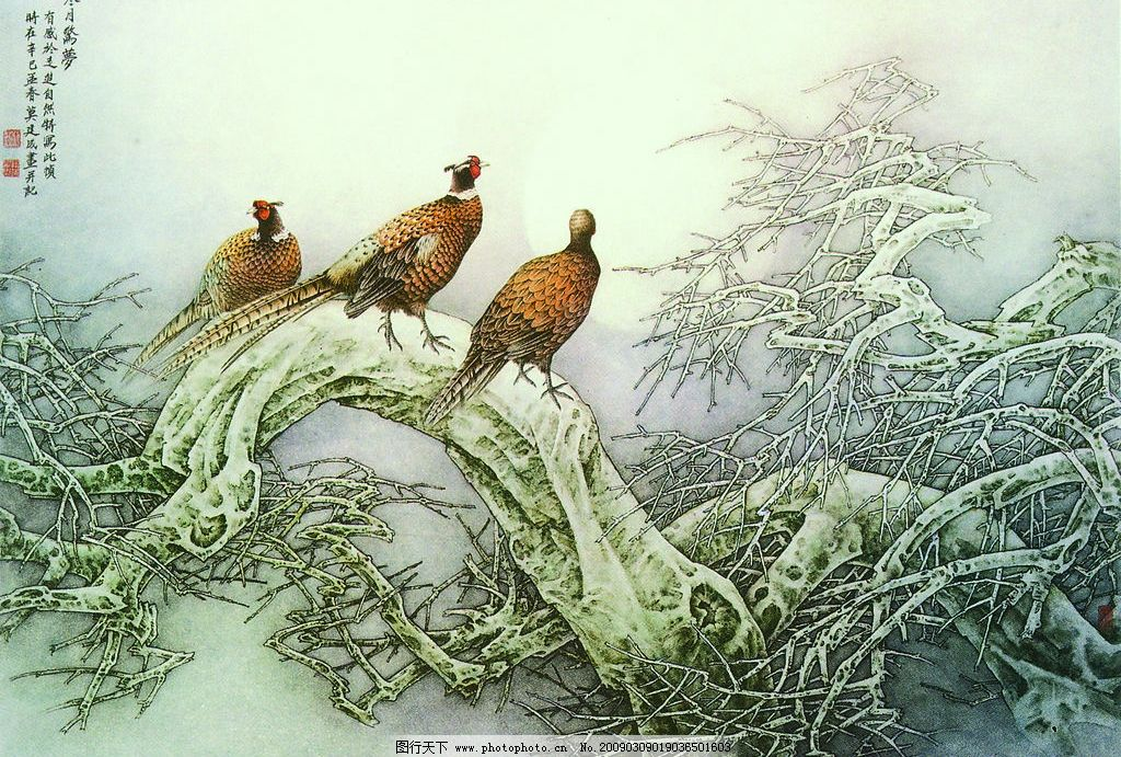 寒月惊梦 中国工笔画 莫建成 月亮 雉鸡 夜景 树木 艺术 文化艺术