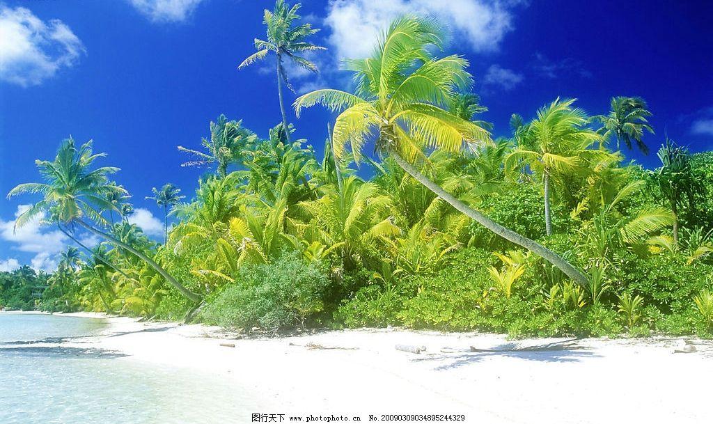 海边沙滩 蓝天 白云 风景 海边 沙滩 树木 自然景观 自然风景 摄影