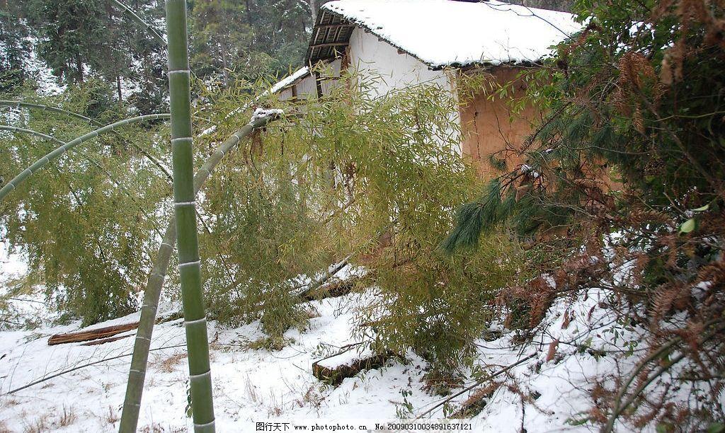 雪景 小屋 竹子 树林 雪 自然景观 自然风景 摄影图库 300dpi jpg