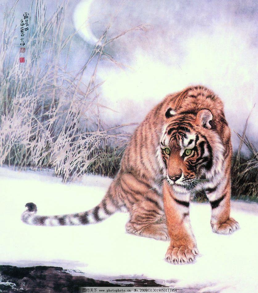 中国工笔画 冯大中 老虎 动物 背景 月亮 雪地 野草 文化艺术 绘画
