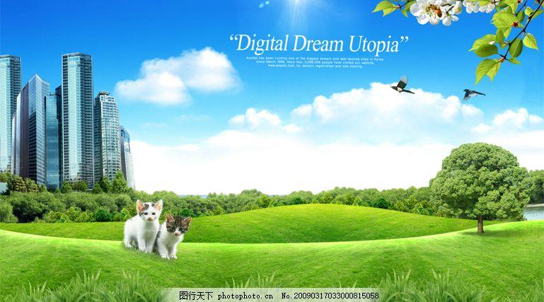 韩国风景 楼房 草地 树木 花 喜鹊 鸟 蓝天 白云 猫咪 太阳