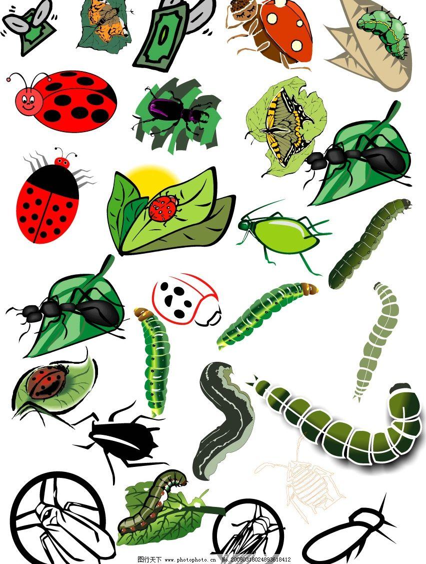 各种小虫子 虫子 昆虫 植保 飘虫 生物世界 矢量图库 cdr