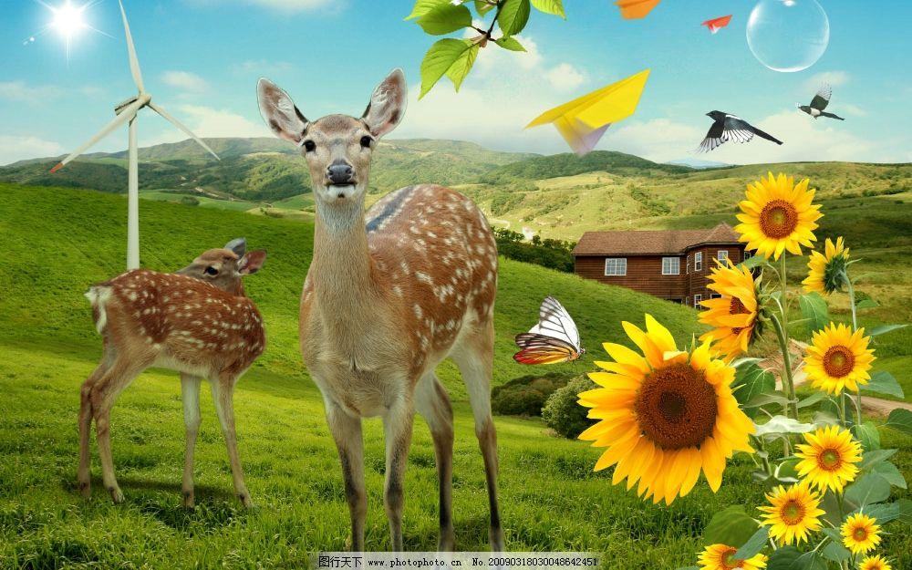 田园牧歌 向日葵 天空 白云 梅花鹿 草地 郊外 别墅 风车 蝴蝶