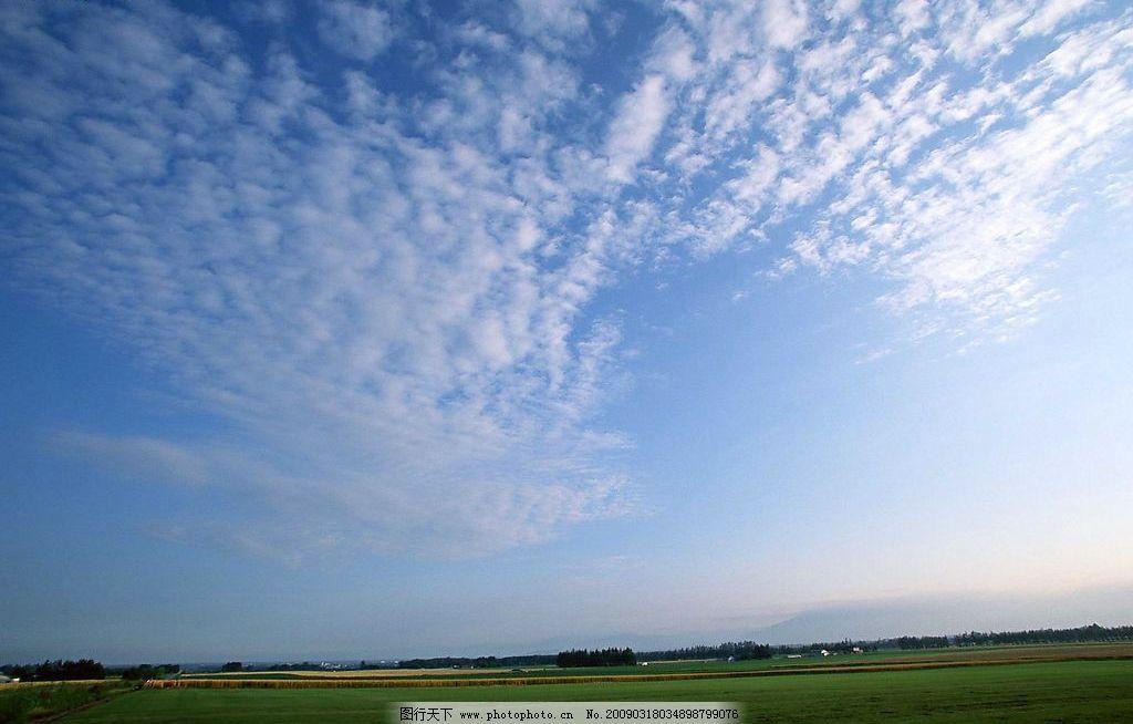 天空 蓝天 白云 草地 树林 自然景观 自然风景 摄影图库 72dpi jpg