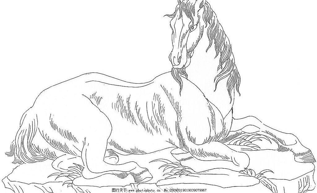 马(卧马) 马 卧马 白描 线描 工笔 白马 手绘 绘画 文化艺术 绘画书法