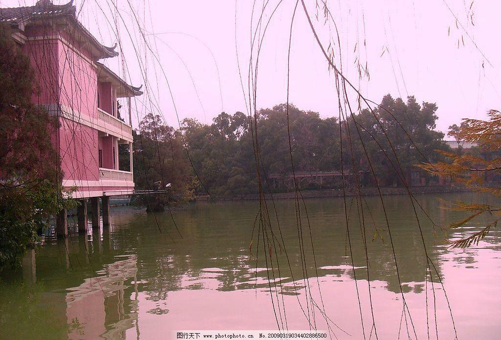 惠州西湖 西湖 小屋 柳树 湖水 自然 自然景观 山水风景 摄影图库 96d